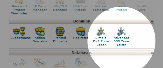 Select Advanced DNS in cPanel