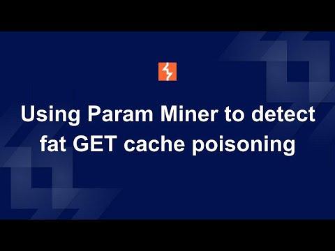 Param Miner demo video