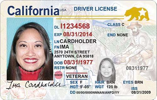 Sample ID