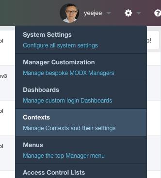 Contexts menu item