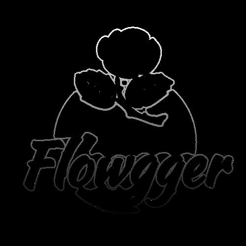 Flowgger