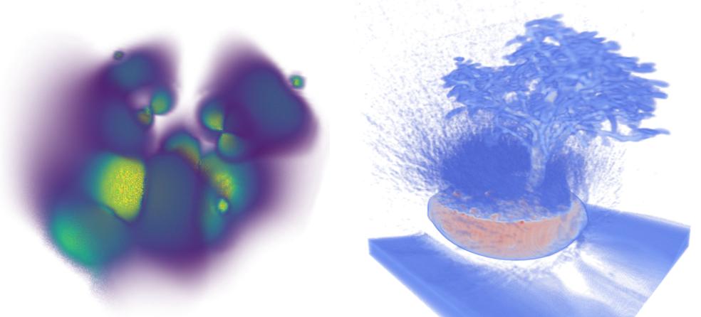 volume renderings