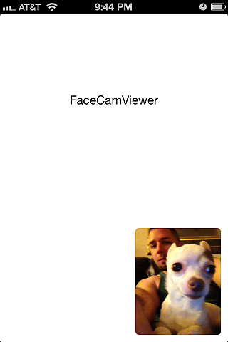 FaceCamViewer Example