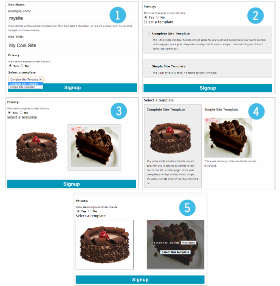 1. Simple selection box. 2. Radio with descriptions. 3. Theme screenshots. 4. Theme screenshots with titles & descriptions. 5. Theme previewer.