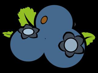 blueberryMSX