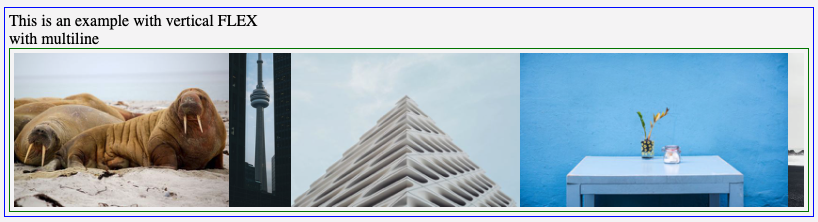 Slick carousel doesn't resize correctly within a flexbox