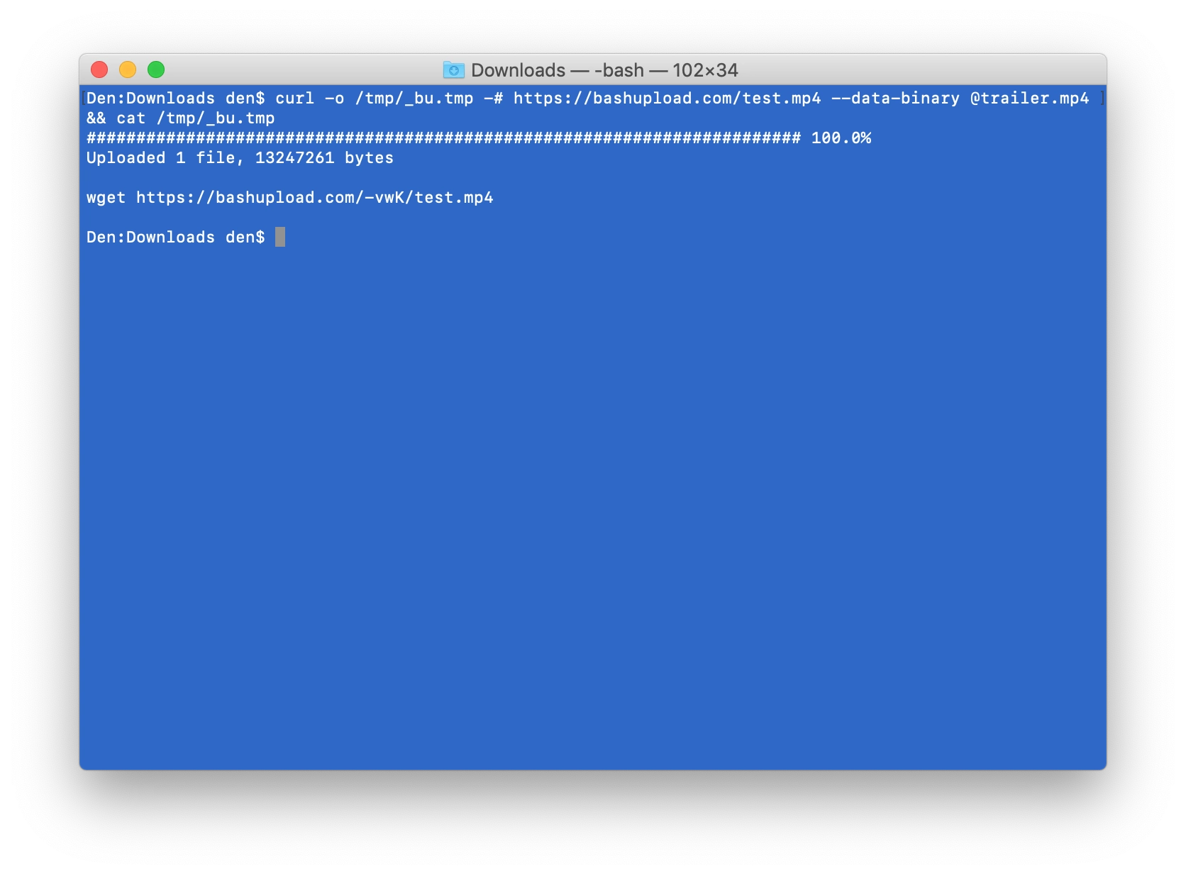 Image of file download info from command line