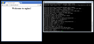 Picture Of browser and PuTTY terminal