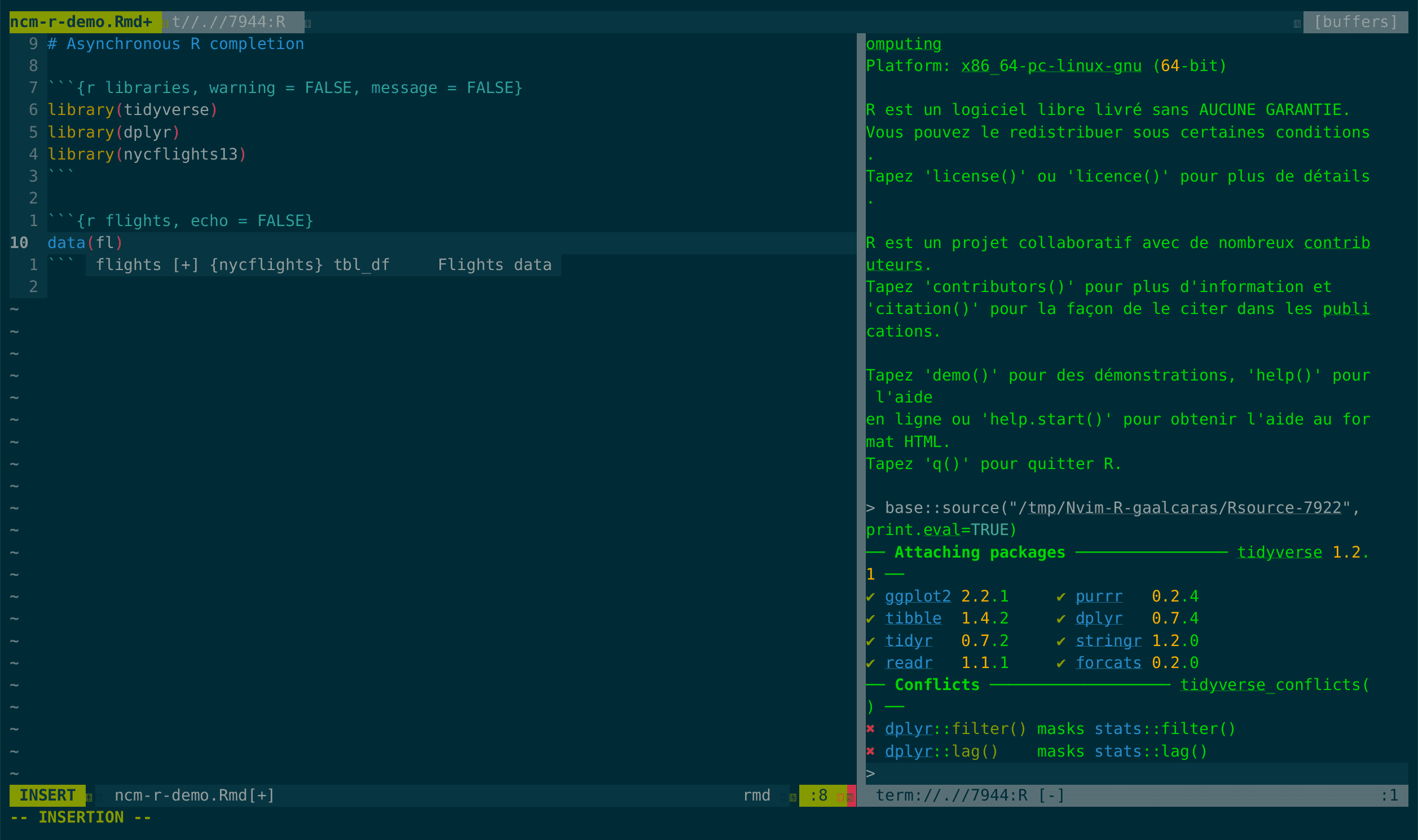 R completion for Neovim and vim 8 with ncm-R
