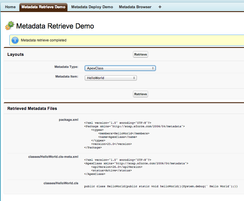 Metadata Retrieve Demo Screenshot