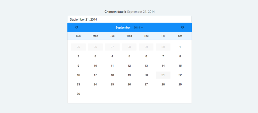 Angular datepicker calendar