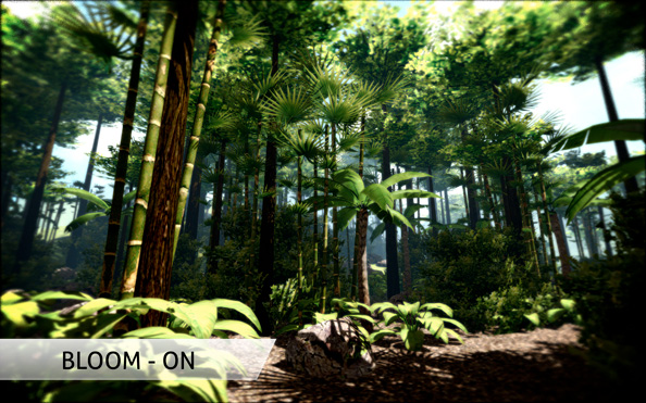 OpenGL Projects: 3D Jungle Viewer OpenGL Source Code and Report