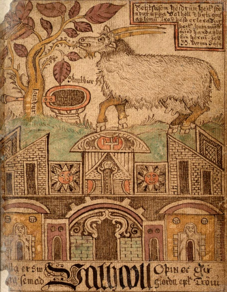 Heidrun, Icelandic Manuscript, SÁM 66, Árni Magnússon Institute for Icelandic Studies