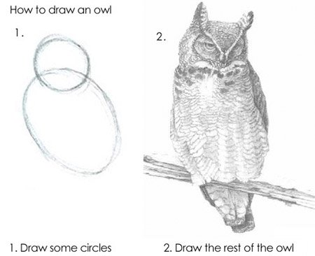An image of a starter owl drawing and the completed drawing. Source