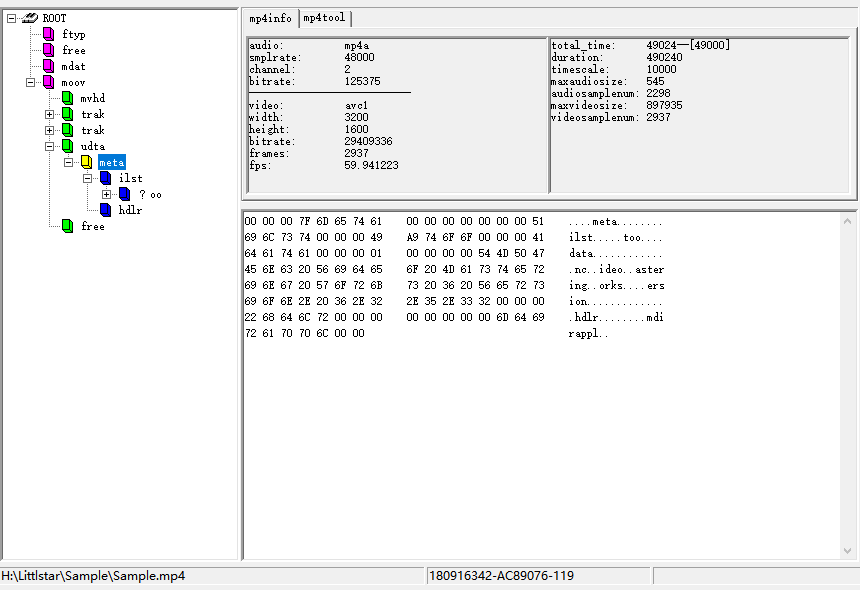 Sample.mp4 file format