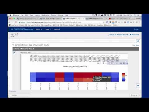 Finding microarray and heatmaps