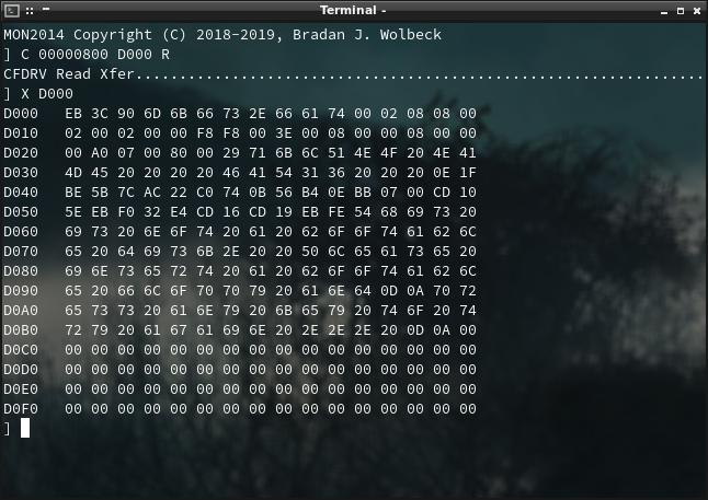 Screenshot of CompactFlash hexdump