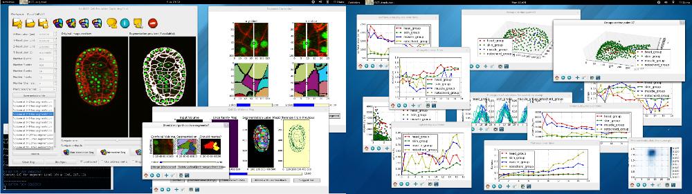 CellECT: Cell Evolutio Capturing Tool