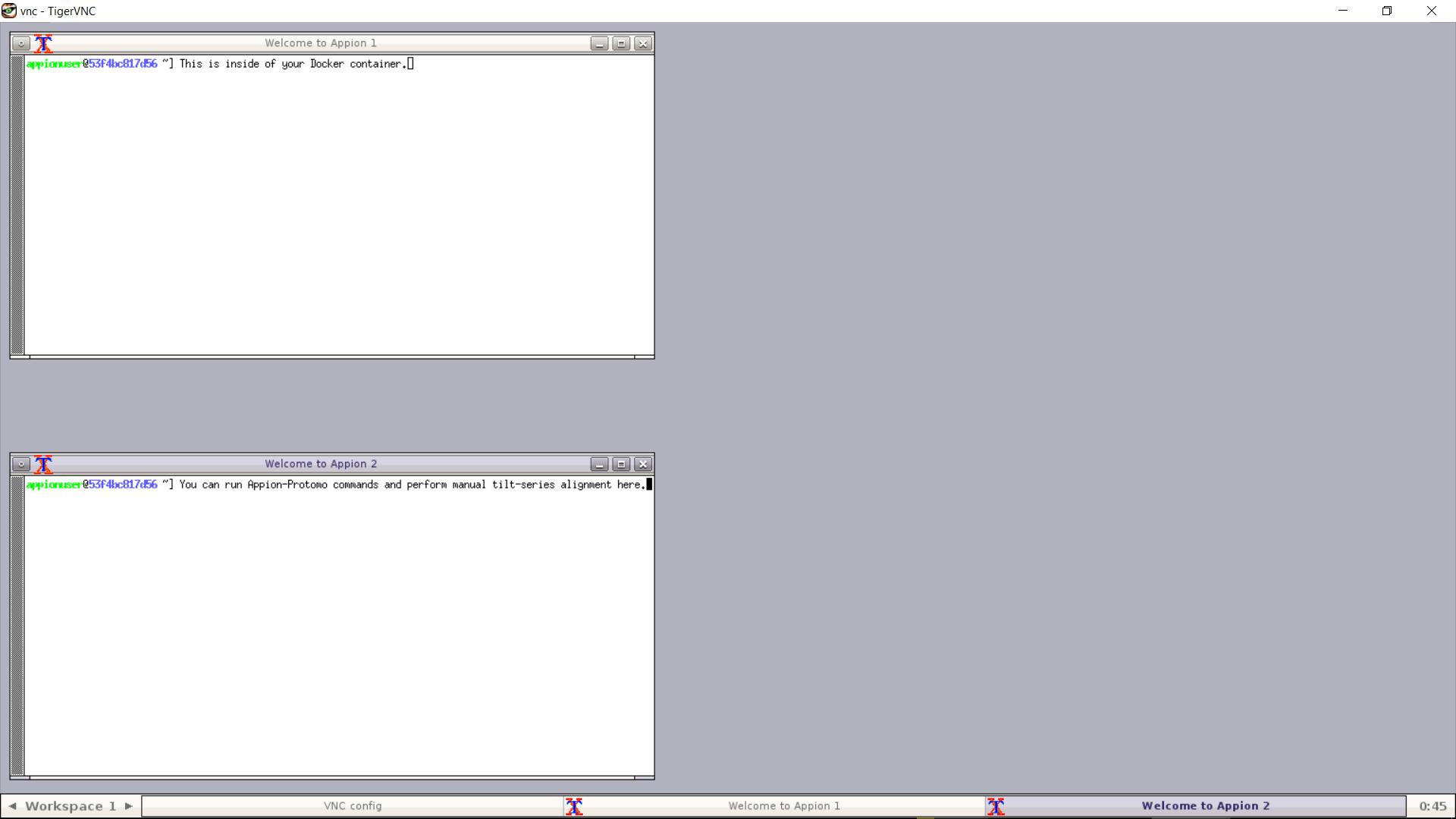 GitHub - nysbc/leginon-tutorial: Docker image for leginon with