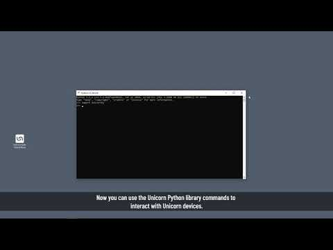 Unicorn Hybrid Black Tutorial: Python API