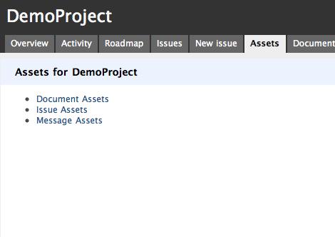 Asset Landing Page