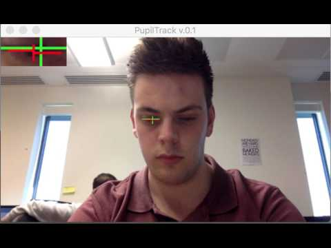 GitHub - TobiasRoeddiger/PupilTracker: Using OpenCV and dlib to draw