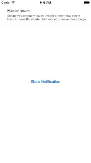 LNRSimpleNotifications Demo Screenshot