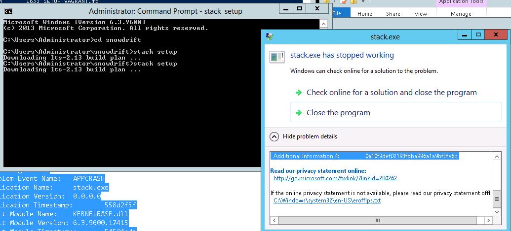 stack crash on EC2 64-bit Windows Server 2012 · Issue #490