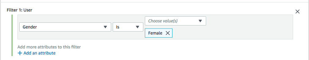 [A User filter that is set up to include all female users.]