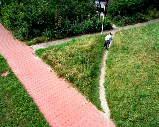 Desired paths fullscreen