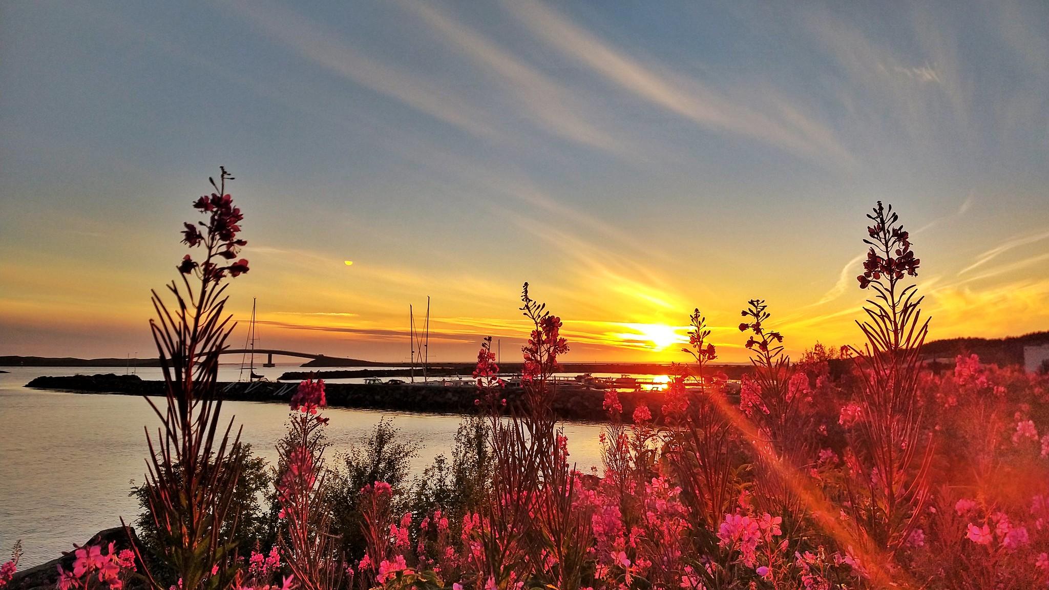 Stokkøya