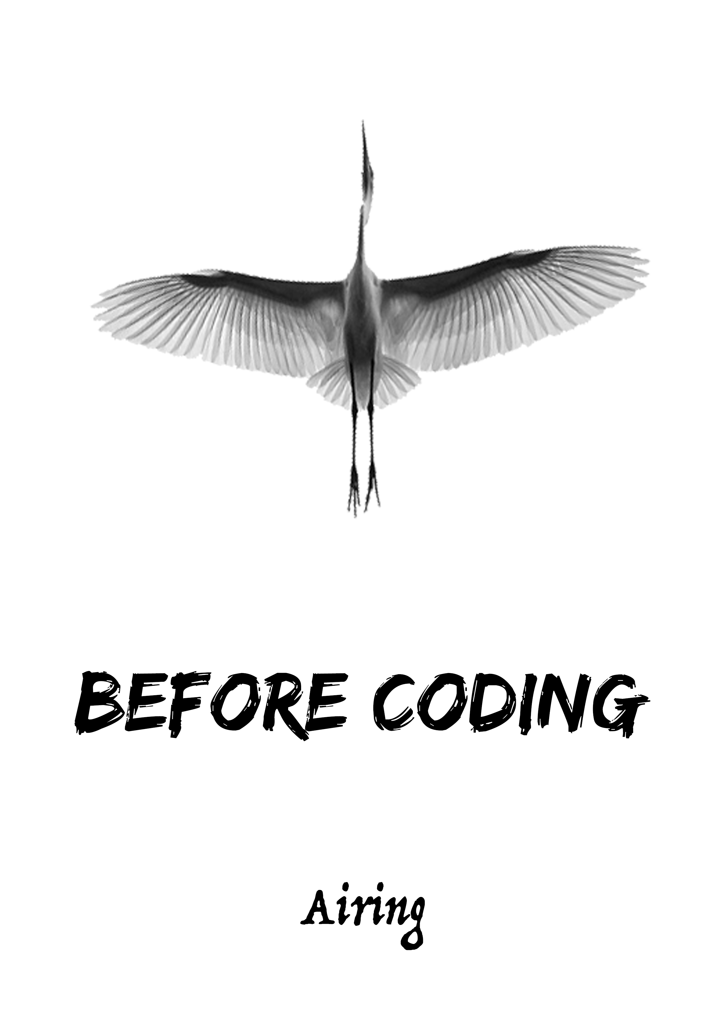 Before Coding