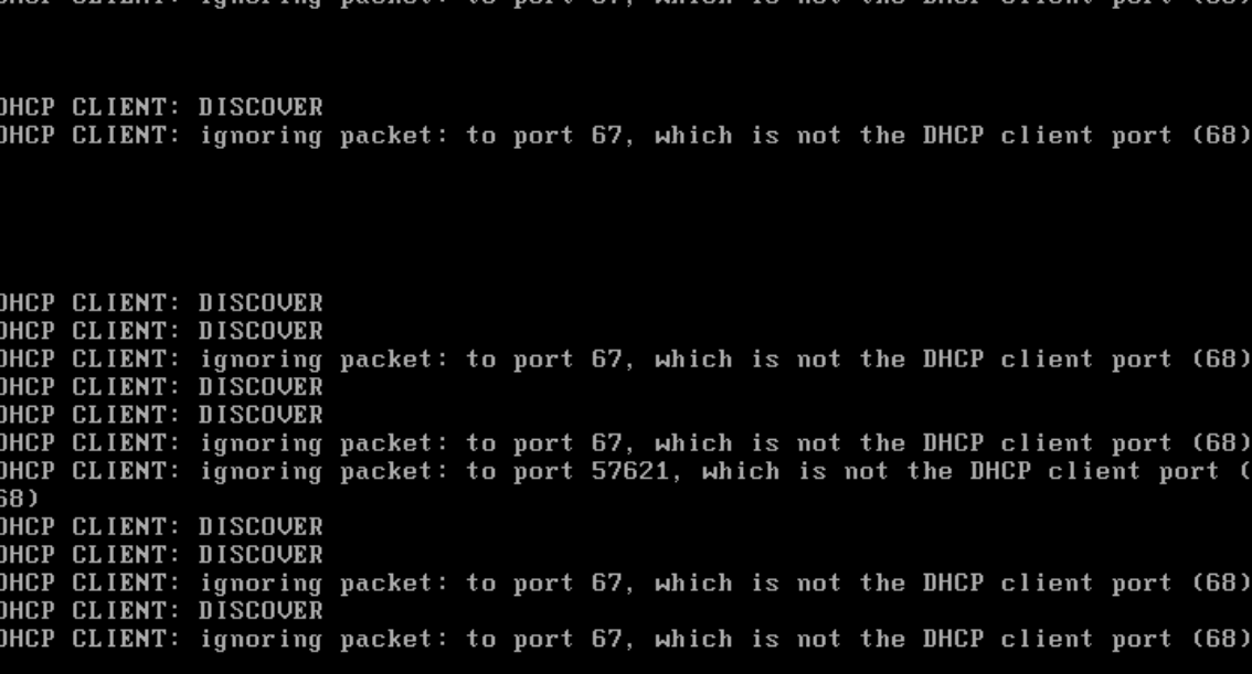 networkd DHCP fails with VMware bridged networking · Issue