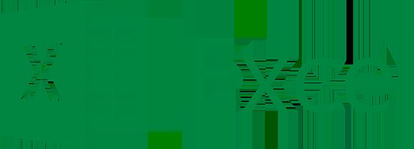 Microsoft Excel™