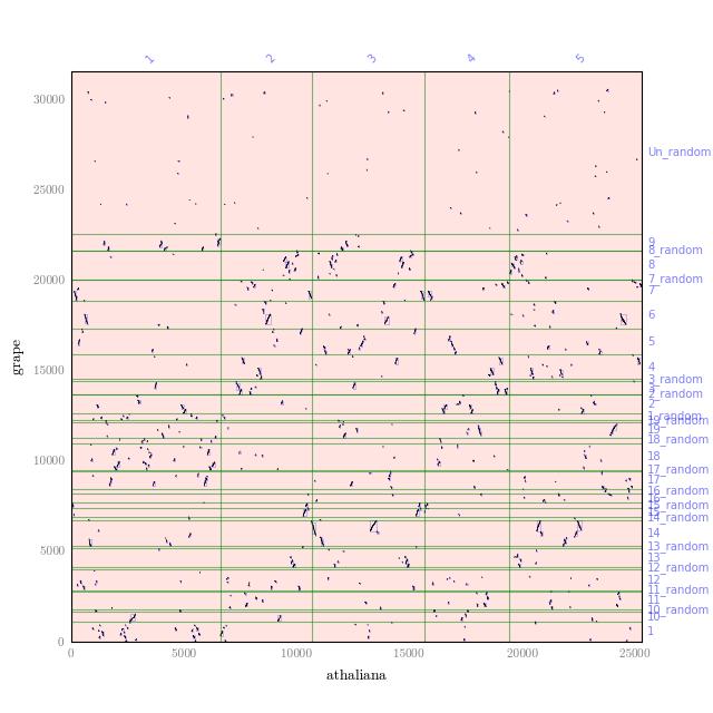 sample dotplot