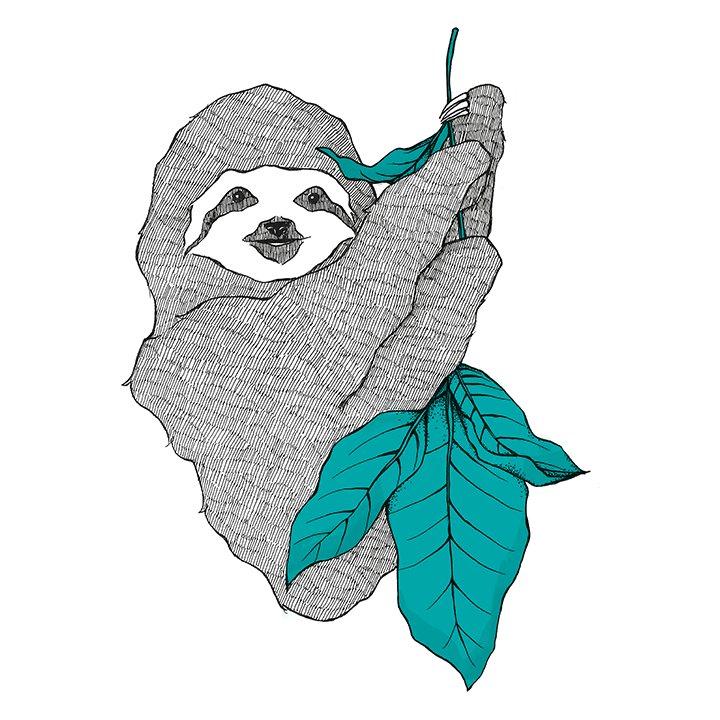 Sloan, the sloth mascot