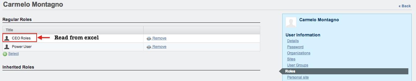 Figure 5 – User roles view