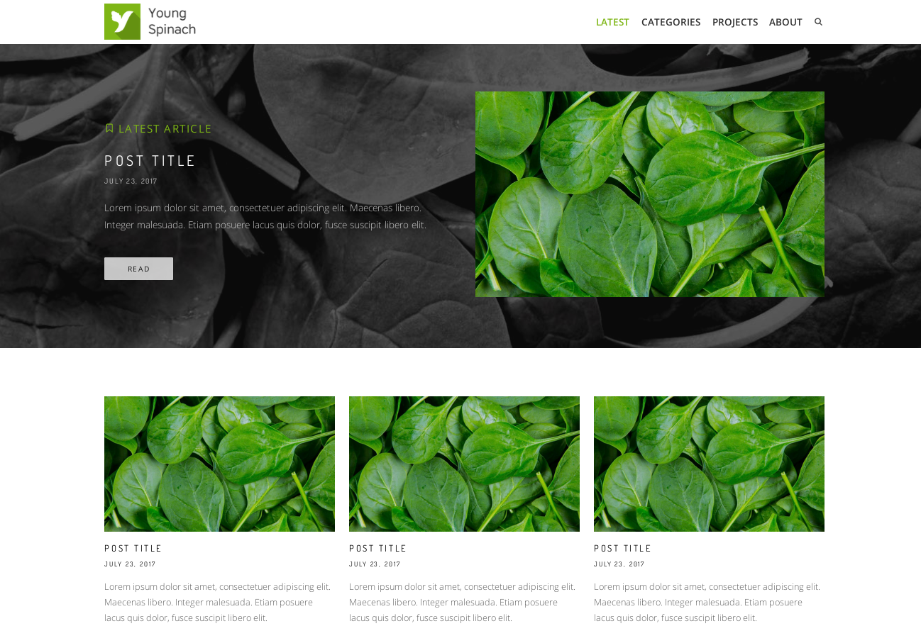 Young Spinach theme