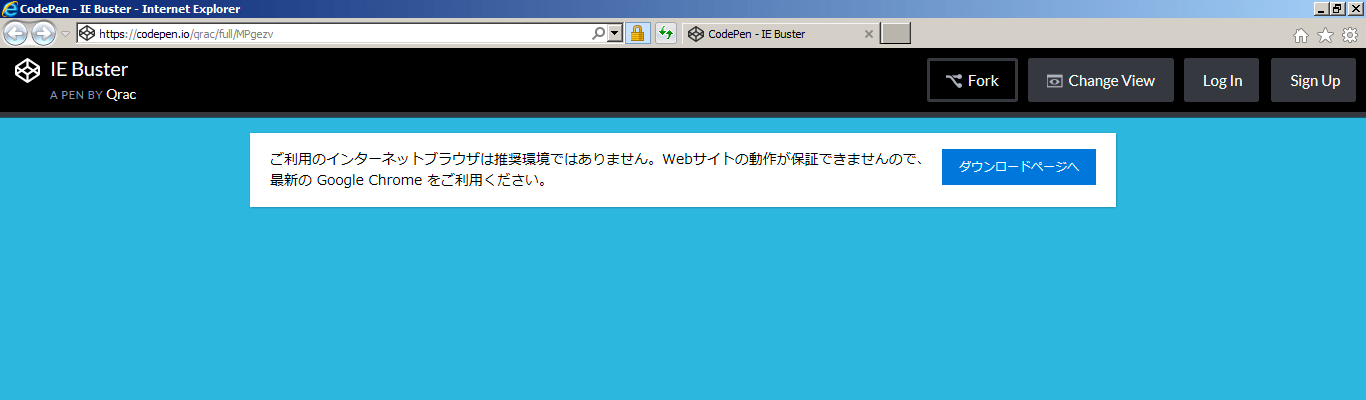 IE Buster Image