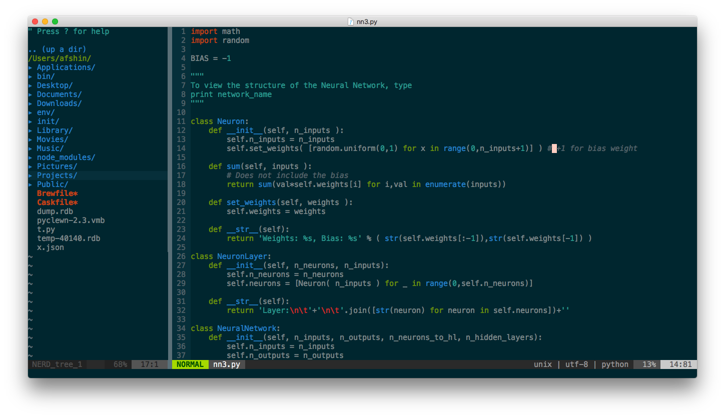 Neovim on macOS