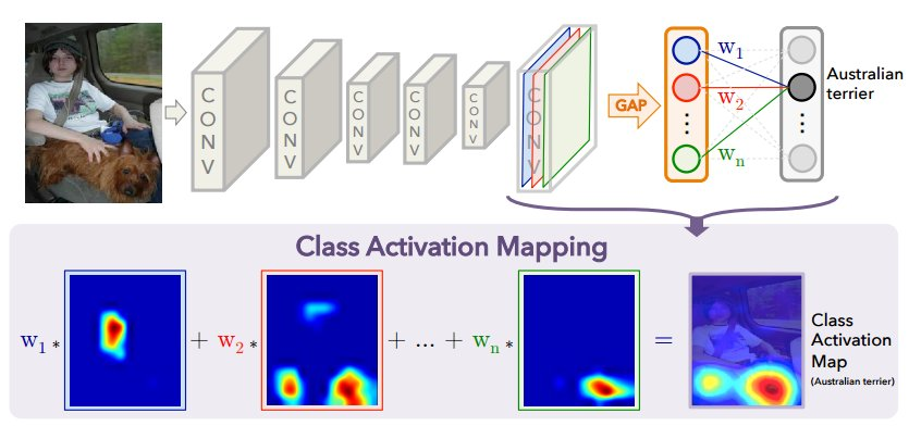 GitHub - metalbubble/CAM: Class Activation Mapping